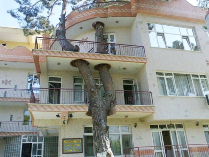 11 έξυπνα κτίρια που διατήρησαν τα δέντρα
