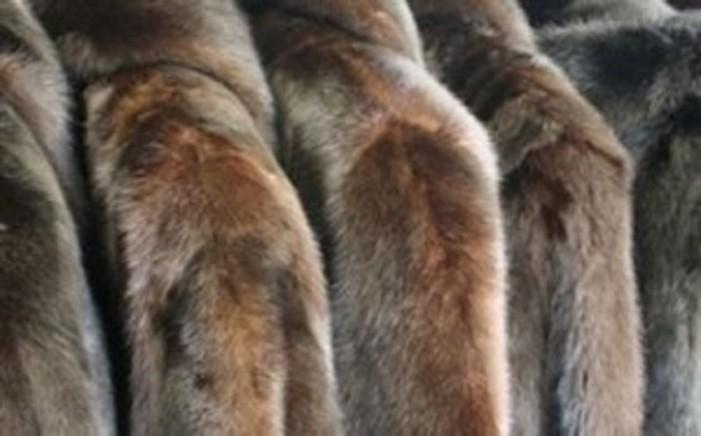 Ο » ΠΡΟΦΗΤΗΣ ΗΛΙΑΣ » για την κλοπή γουναρικών στην Χαλκιδική