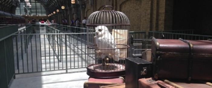 12 μυστικά που αποκάλυψε η Τζ. Κ. Ρόουλινγκ για τον Χάρι Πότερ