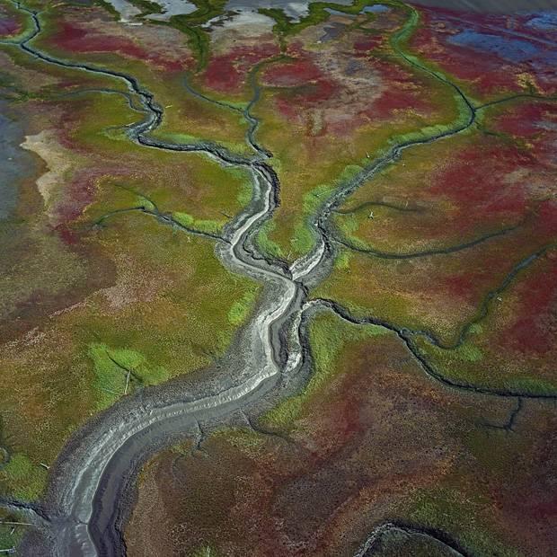 889620_Susitna-Flats_Alaska_USA