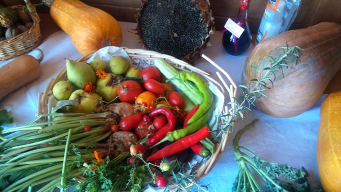 Φθινοπωρινή γιορτή σπόρων στην Καστοριά (φωτό)