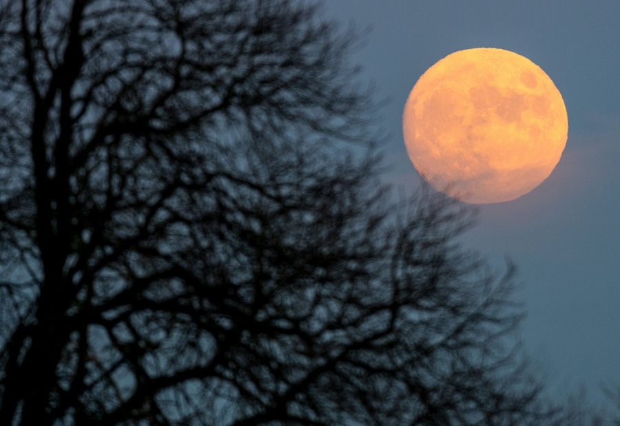 epa05080531 With 97 per cent of its entirety visible, the nearly full moon is seen in the sky over in the Oder-Spree district in Sieversdorf, Germany, on Christmas Eve 24 December 2015 evening. This year's last full moon exactly falls on Christmas Day - a coincidence which according to the lunar calendar for the last time happened 38 years ago and the next time will happen again in the year 2034. EPA/PARTICK PLEUL