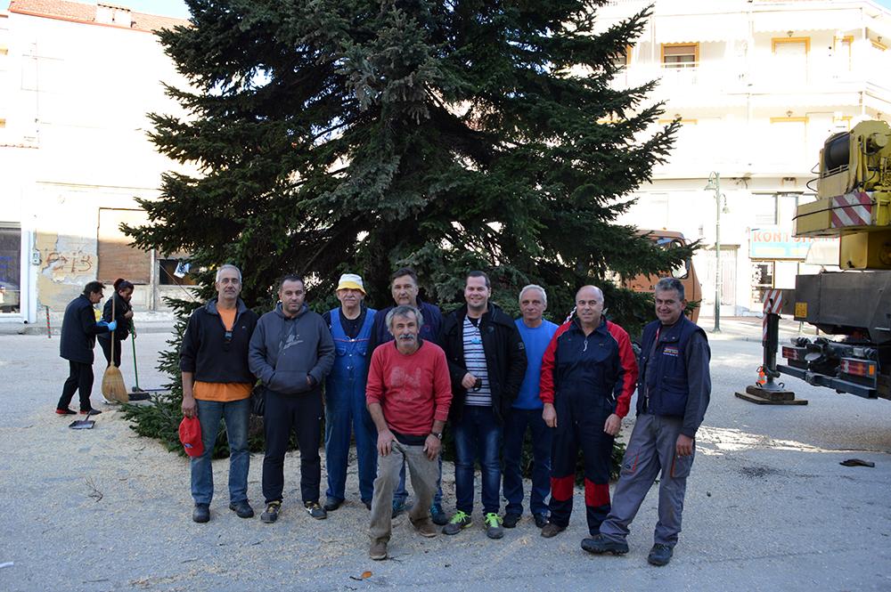 Η ομάδα ειδικών αποστολών του Δήμου που έκοψε, μετέφερε και τοποθέτησε το δέντρο
