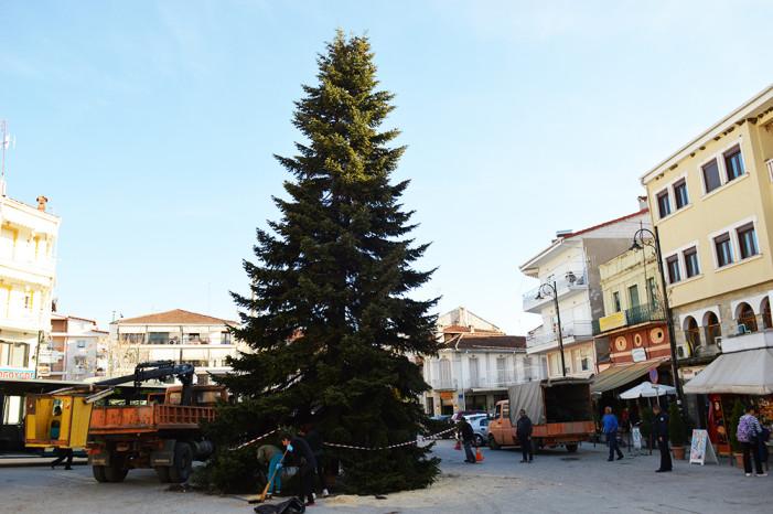 Ήρθε το Χριστουγεννιάτικο δέντρο στο Άργος Ορεστικό! (βίντεο)