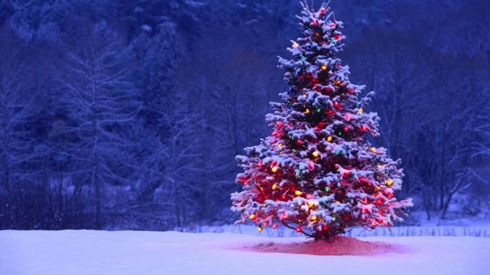 Στις 13 Δεκεμβρίου το άναμμα του χριστουγεννιάτικου δέντρου στην Καστοριά
