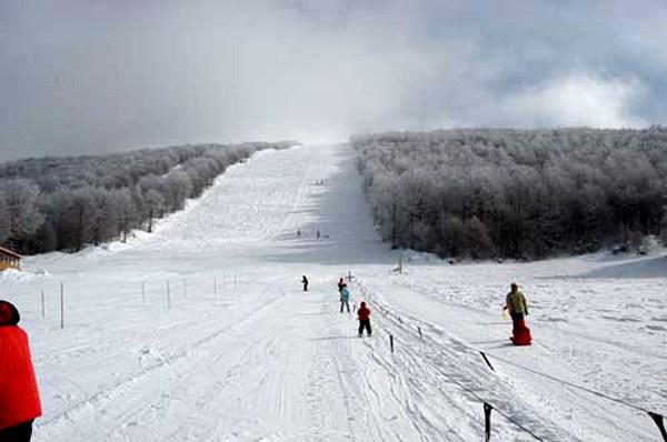 Επιτροπή ελέγχου από τον Δήμο στη διαχείριση του Χιονοδρομικού Κέντρου Βιτσίου