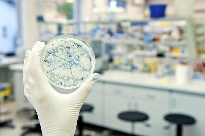 ΟΗΕ: Οκτώ γνωστοί και άγνωστοι ιοί που απειλούν με επιδημίες