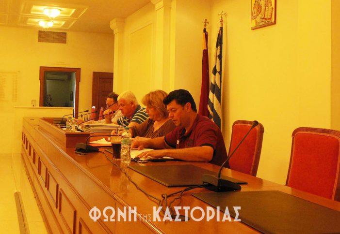 Ομόφωνα ψηφίστηκε από το Δημοτικό Συμβούλιο Καστοριάς, το σχέδιο στρατηγικού σχεδιασμού του Δήμου 2015-2019