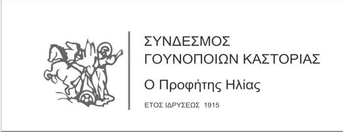Ο Σύνδεσμος Γουνοποιών Καστοριάς «Ο Προφήτης Ηλίας» θα πραγματοποιήσει επίδειξη γούνας στο Κρασνογιάρσκ