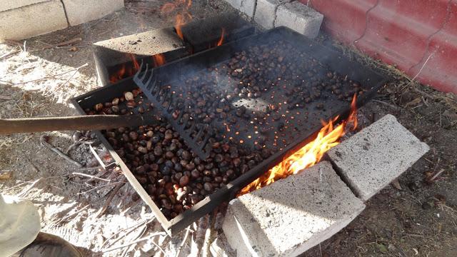 Τοπική Κοινότητα Καστανόφυτου: Η 30η Καστανογιορτή στο Καστανόφυτο (φωτογραφίες)