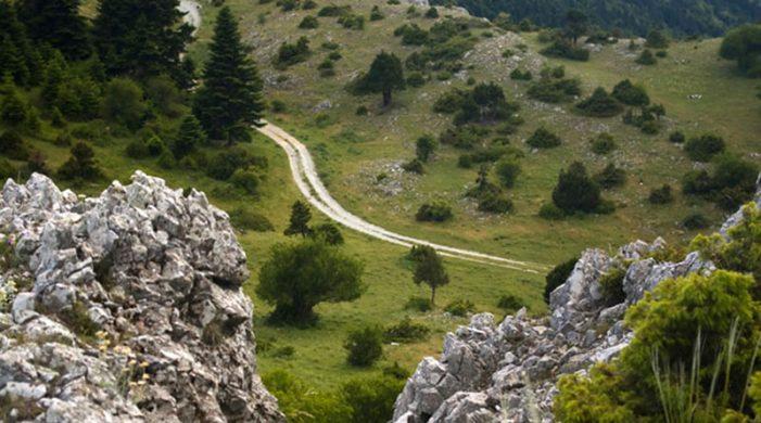 ΣΔΟΠ Καστοριάς: Ανάβαση στα Καμβούνια, 1613m