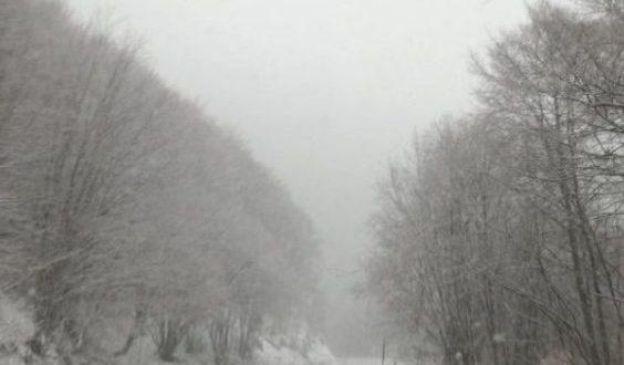 Στα λευκά ντύθηκαν τα ορεινά της Φλώρινας – Δείτε φωτογραφίες από τη χιονισμένη Βίγλα