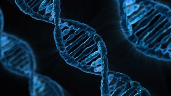 Προϊστορικό ανθρώπινο γενετικό υλικό εντοπίστηκε στο χώμα