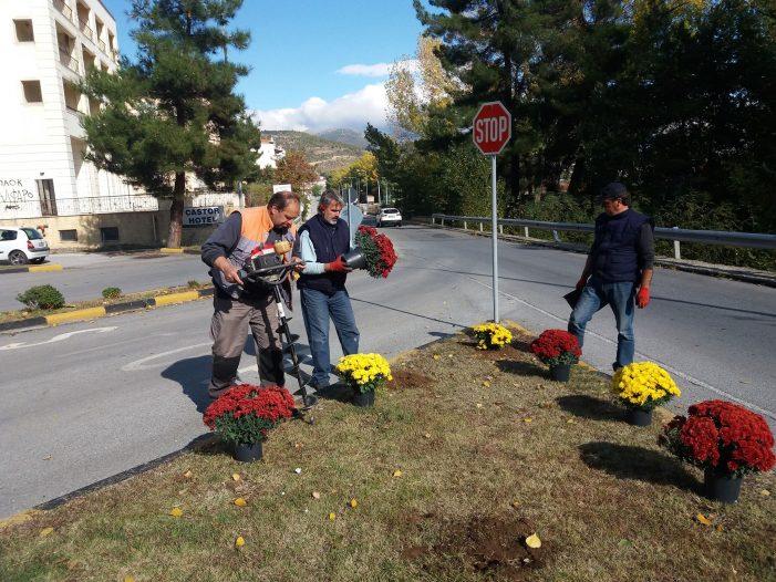 Καστοριά: καθαρισμός και φύτευση λουλουδιών