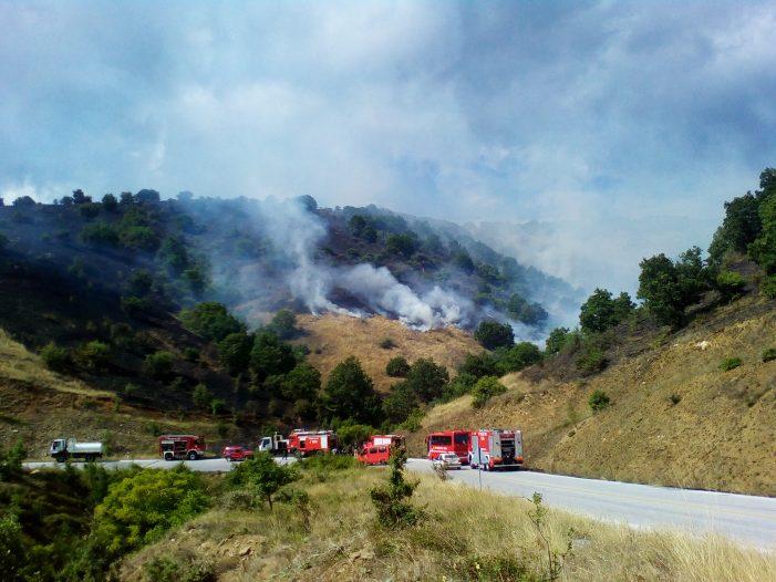 Κατάσβεση της πυρκαγιάς στη Βέργα