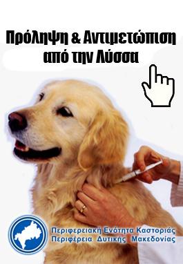 ΠΕ Καστοριάς: Πρόληψη και αντιμετώπιση από τη λύσσα