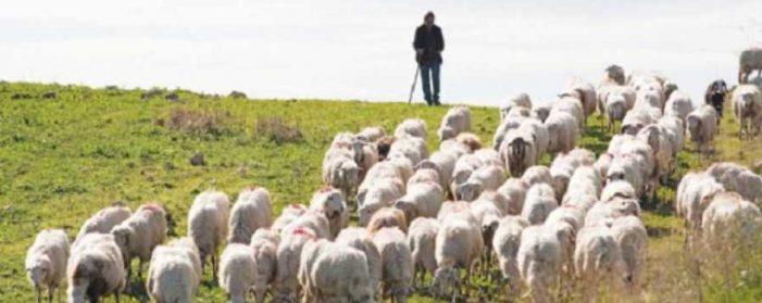 Διεύθυνση Αγροτικής Οικονομίας ΠΕ Καστοριάς: Ανακοίνωση προς Κτηνοτρόφους
