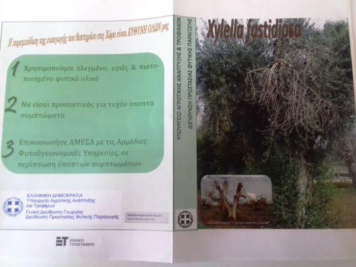 Ενημέρωση σχετικά με την πρώτη επιβεβαιωμένη εμφάνιση του Επιβλαβούς Οργανισμού Καραντίνας Xylella fastidiosa στην Περιφέρεια του Πόρτο της Πορτογαλίας