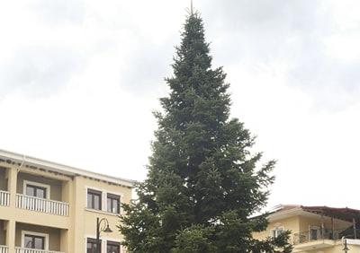 Άργος Ορεστικό: Στήθηκε το δέντρο στην Πλατεία