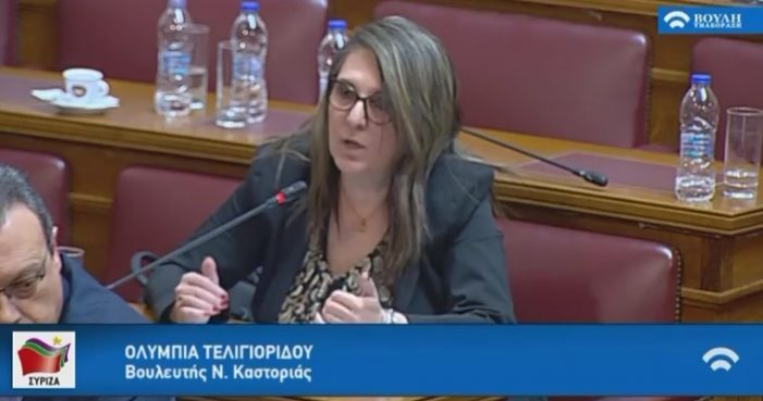 Ομιλία Ολυμπίας Τελιγιορίδου στην Ειδική Διαρκή Επιτροπή Ευρωπαϊκών Υποθέσεων και Διαρκή Επιτροπή Παραγωγής και Εμπορίου