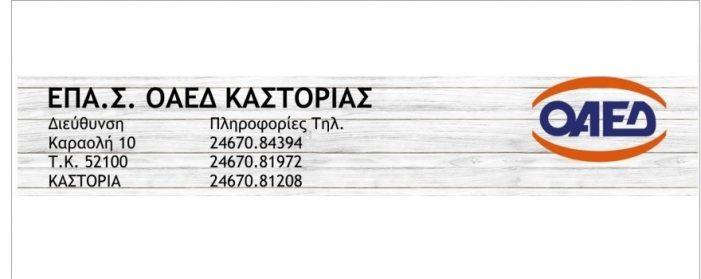 ΕΠΑ.Σ Καστοριάς ΟΑΕΔ: Ειδικότητες σχολικού έτους 2020-2021