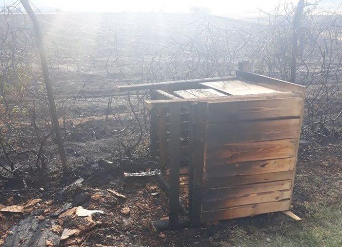Άργος Ορεστικό: Πυρκαγιά ξέσπασε εχθές στην περιοχή Κάργα (φωτο-video)