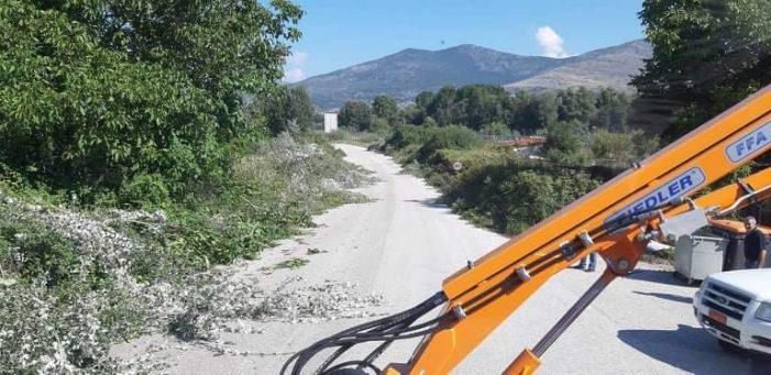 Εργασίες κοπής κλαδιών στο δρόμο προς το δασάκι Κολοκυνθούς από την Π.Ε. Καστοριάς