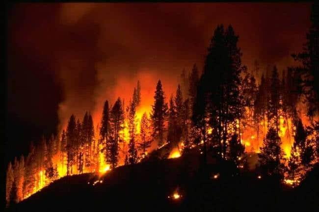 Λήψη Επιπλέον Μέτρων προς Αποφυγή Εκδήλωσης και Εξάπλωσης Πυρκαγιών στην Π.Ε. Καστοριάς